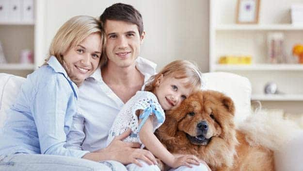 Wills & Trusts dog-young-family Direct Wills Southend-on-Sea